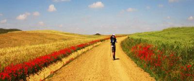 Camino-di-Santiago